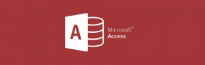 MS Access expert inhuren