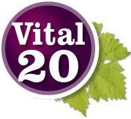 Vital20 logo